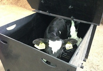 Solway Recycling: Calf Reviver Box launched