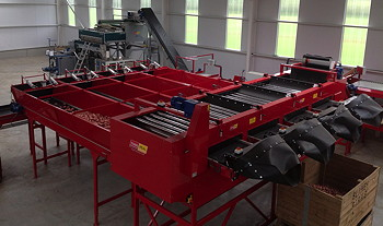 Tong Peal: Cutting-edge technology added to proven vegetable grader