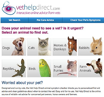 Vet Help Direct: New website provides veterinary advice