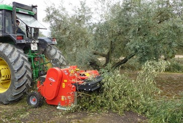 Kuhn: Orchard shredder makes light work of tree prunings