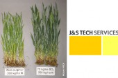 J&S Tech Services: Getting serious about sulphur with Brimstone 90