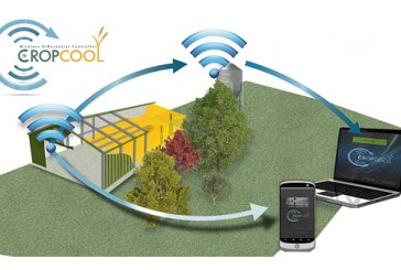 Evans and Pearce: Cost-effective grain store automation with CropCool Wireless