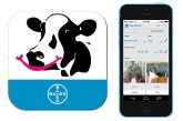 Bayer: Newly updated dairy app holds bonus for vets