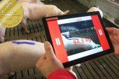 Meier-Brakenberg: Piggy Check weighing wins EuroTier Gold