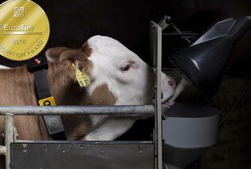 Förster-Technik: Smart Calf System awarded EuroTier Gold for innovation