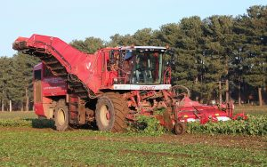 Vervaet: Increased capacity from new Q-616 beet harvester