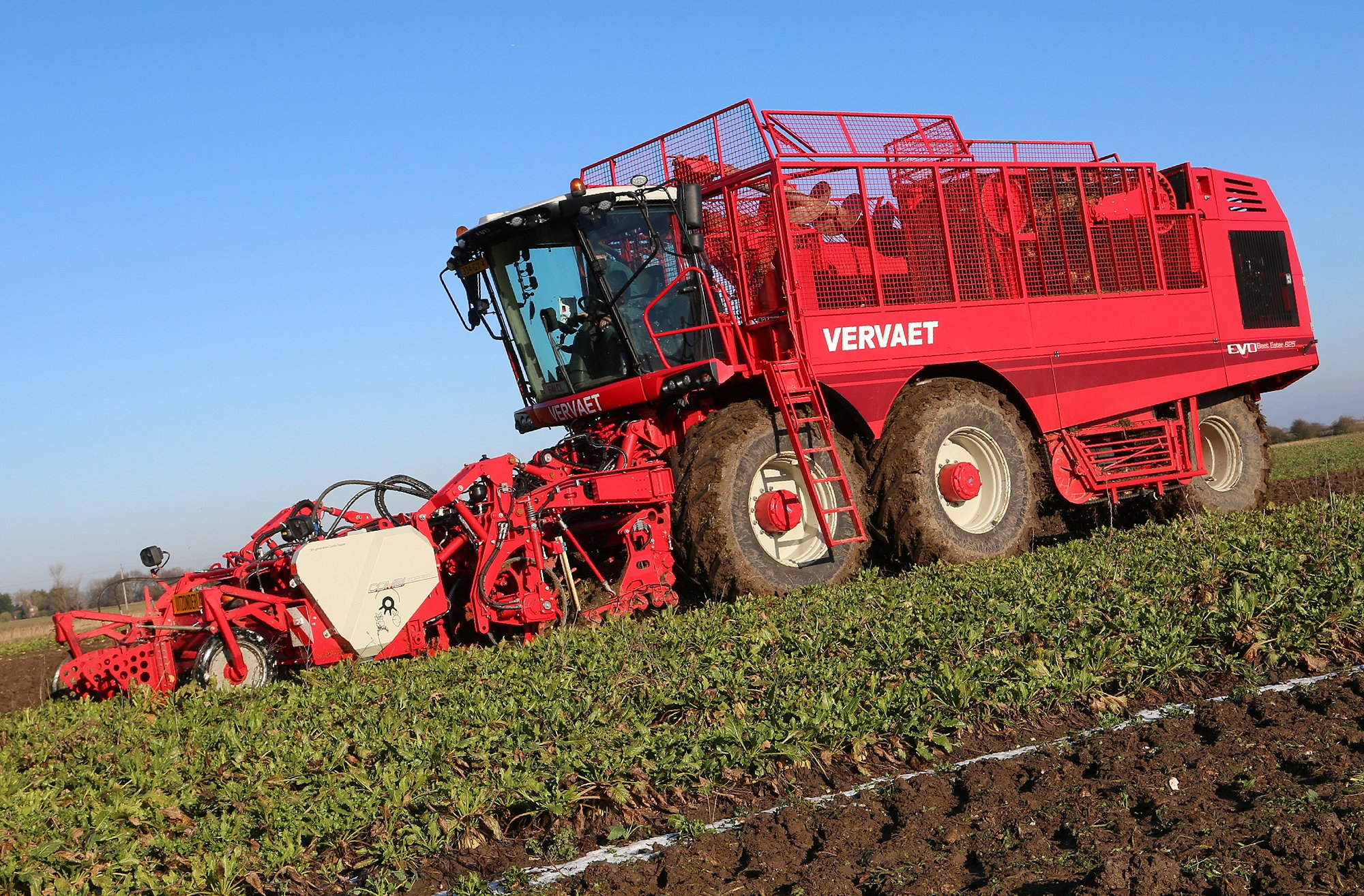 Vervaet sugar beet harvesters are now available with a new rollerbed primary cleaner.