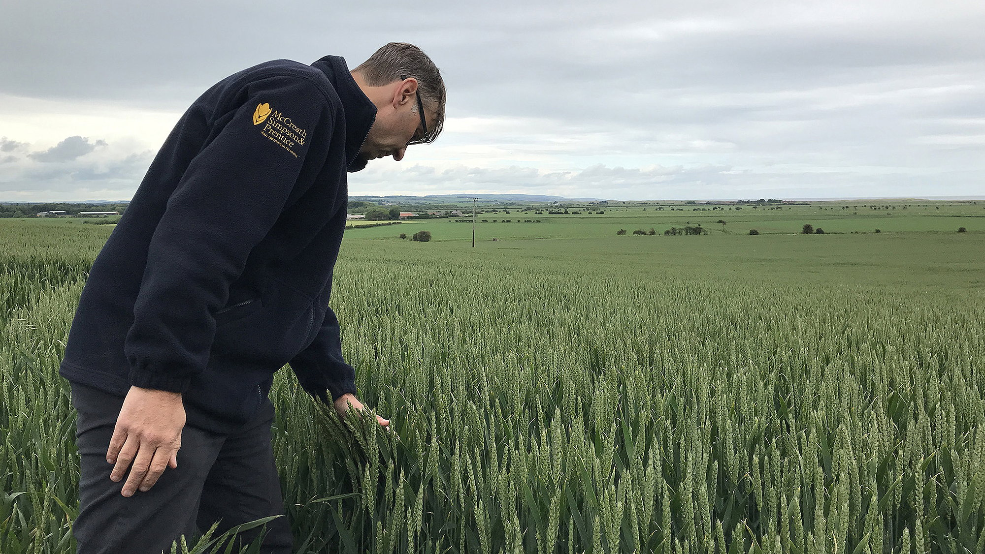 Agronomist David Cairns has started using Skippy Scout to find rust faster