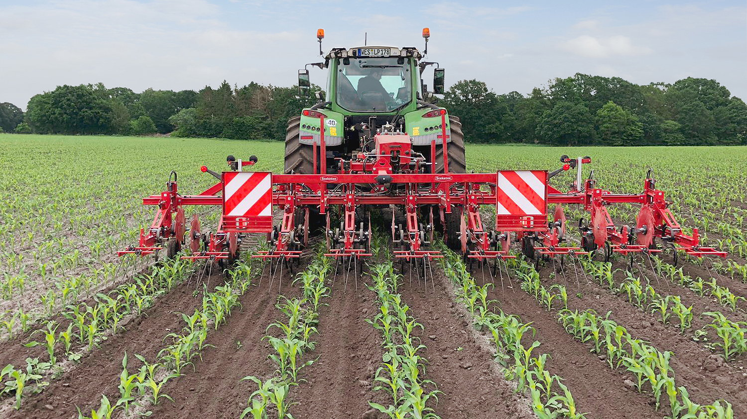 A Steketee EC-Weeder carrying out mechanical weed control with maize DeltaRows